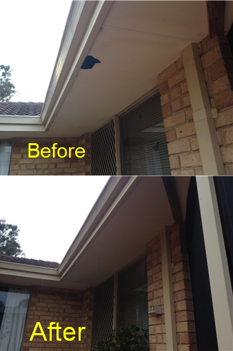 Cracked Eaves Replacement Perth